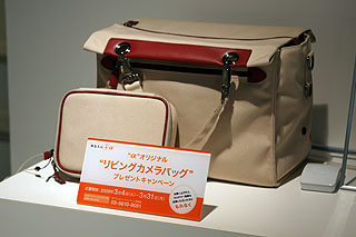 bag1-10.jpg